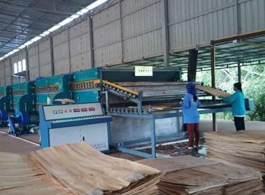 木材烘干机