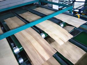 环保木材干燥机